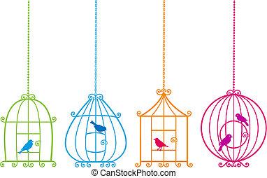 schattig, vogels, mooi en gracieus, birdcages, v