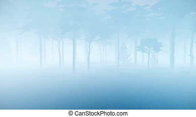 schemering, spooky, dennenboom, mist, bos, dik, 4k