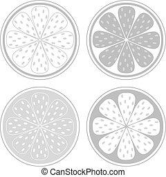 schijfen, citrus, vrijstaand, fruit, achtergrond, witte