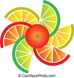 schijfen, sinaasappel, citroen, grapefruit, kalk