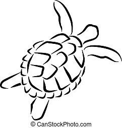 schildpad, stijl, caligraphy, zwemmen