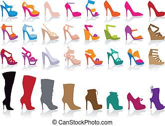 schoentjes, vector, set, kleurrijke
