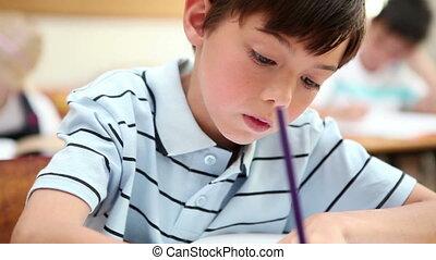 schrijvende , pupil, aantekenboekje, zijn