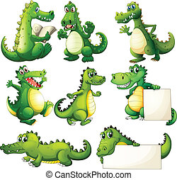 schrikaanjagend, acht, krokodillen