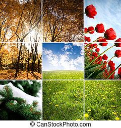 seizoen, kleuren