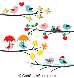 seizoenen, takken, vogels