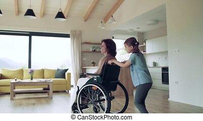 senior, kleine, meisje, grootmoeder, wheelchair, binnen, haar, home.