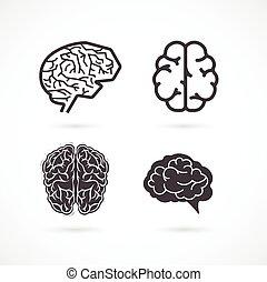 set, iconen, -, hersenen, vector, illustraties