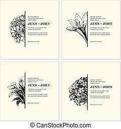 set, sierlijk, floral, vector, helft, lijstjes