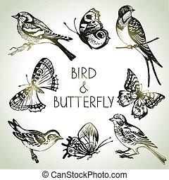 set, vlinder, vogel, illustraties, hand, getrokken