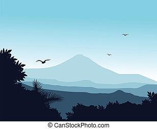 silhouette, achtergrond, natuur