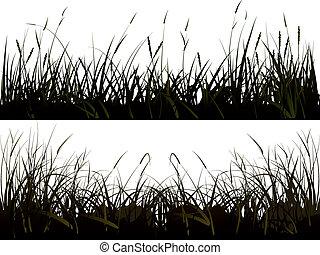 silhouette, grass., weide
