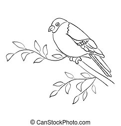 silhouette, mus, zetten, -, vector, tak, vogel