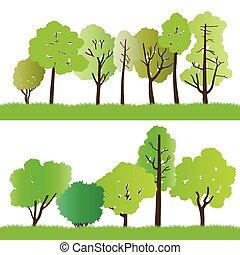 silhouettes, bos, bomen