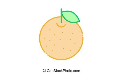 sinaasappel, citrus, pictogram, animatie