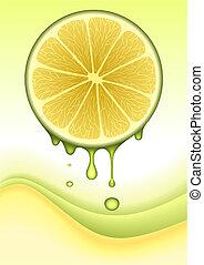 sinaasappel, concept, vector, citroen, /
