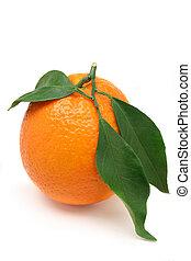 sinaasappel verlaat
