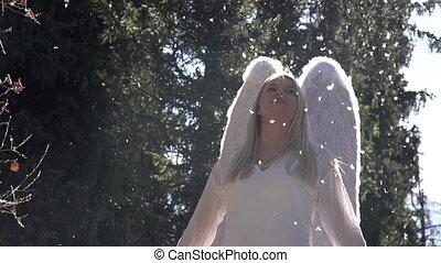 slaan, vleugels, engel