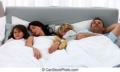 slapende, samen, gezin, schattig