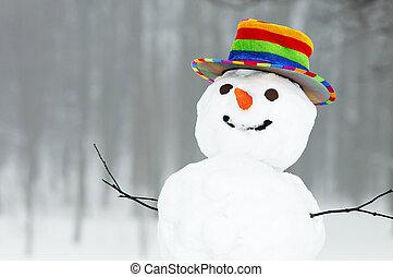 sneeuwpop, gekke , winter