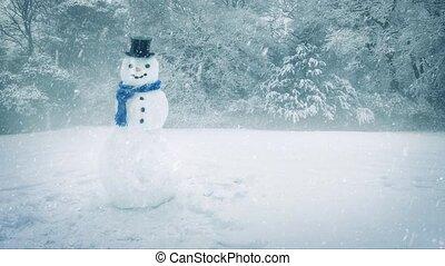 sneeuwpop, zware, sneeuwval