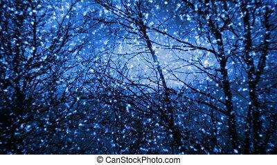 sneeuwval, nacht