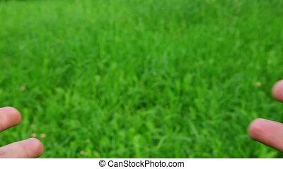 spannen, gras, groene achtergrond, handen