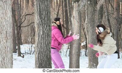 spelend, winter, bos