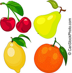 spotprent, fruit, set