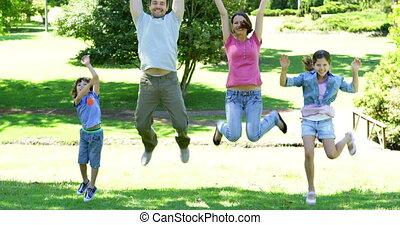 springt, park, gezin, vrolijke