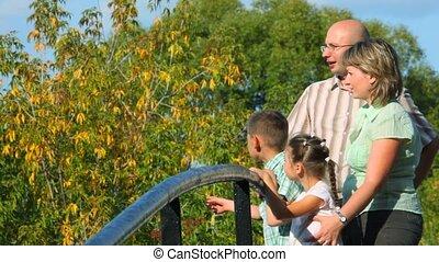 staand, brug, weg, gezin, park, vier, profiel, blik