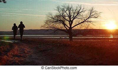 staand, silhouette, natuur, atletisch, mannen, boompje, jonge, dennenboom, twee, gezonde , rennende , ondergaande zon , bos, man, buitenshuis, alleen, levensstijl, sportende, silhouette., straat, sunlight.