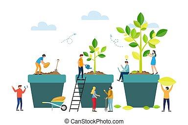stadia, plant., boompje, zaad, groot, groeien