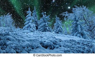 starry, lichten, noordelijk, hemel