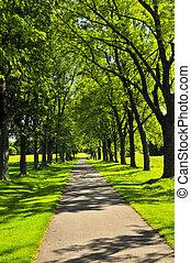 steegjes, park, groene