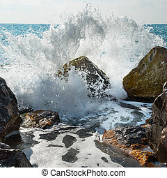 steen, storm., waves., bedekt, groot
