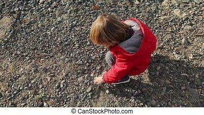 stenen, jongen, collects