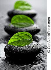 stenen, water, bladeren, druppels, zen