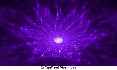 stralend, lotus