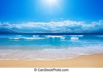 strand, paradijs