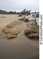 strand rots