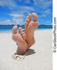 strand, voetjes, zanderig, tropische