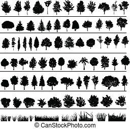struiken, bomen, gras