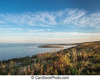 struiken, heuvels, japan, kust, marinier, zee, bomen, landscape