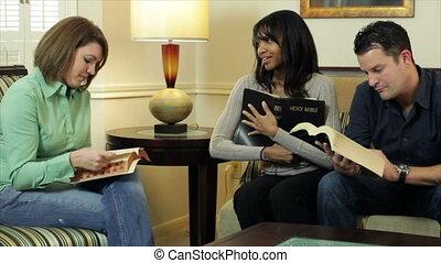 studeren, bijbel, vrienden, hebben