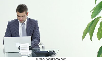succesvolle , aan het werk werkkring, zakenman