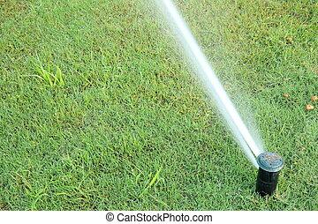 systeem, watering, automatisch, groene