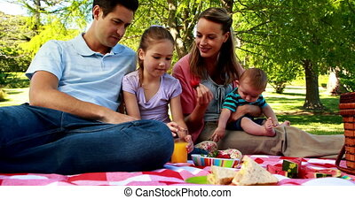 t, het genieten van, familie picknick, vrolijke