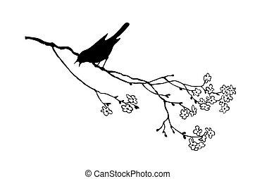 tak, boompje, vogel, vector, silhouette