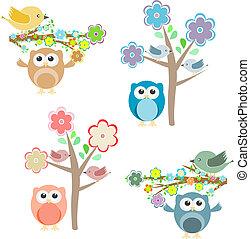takken, zittende , boompje, uilen, bloeien, vogels